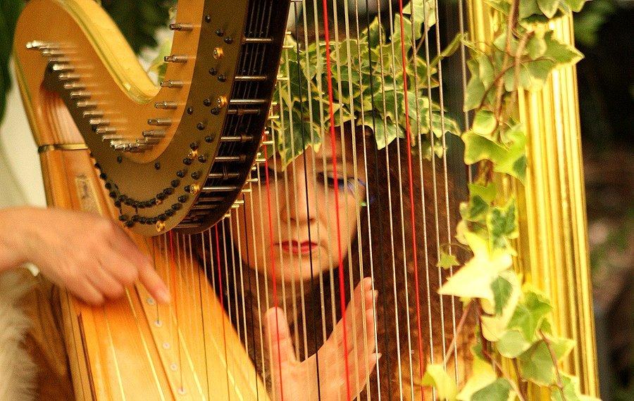 ....Elizabeth Jane Baldry, harpist. Romance all around.