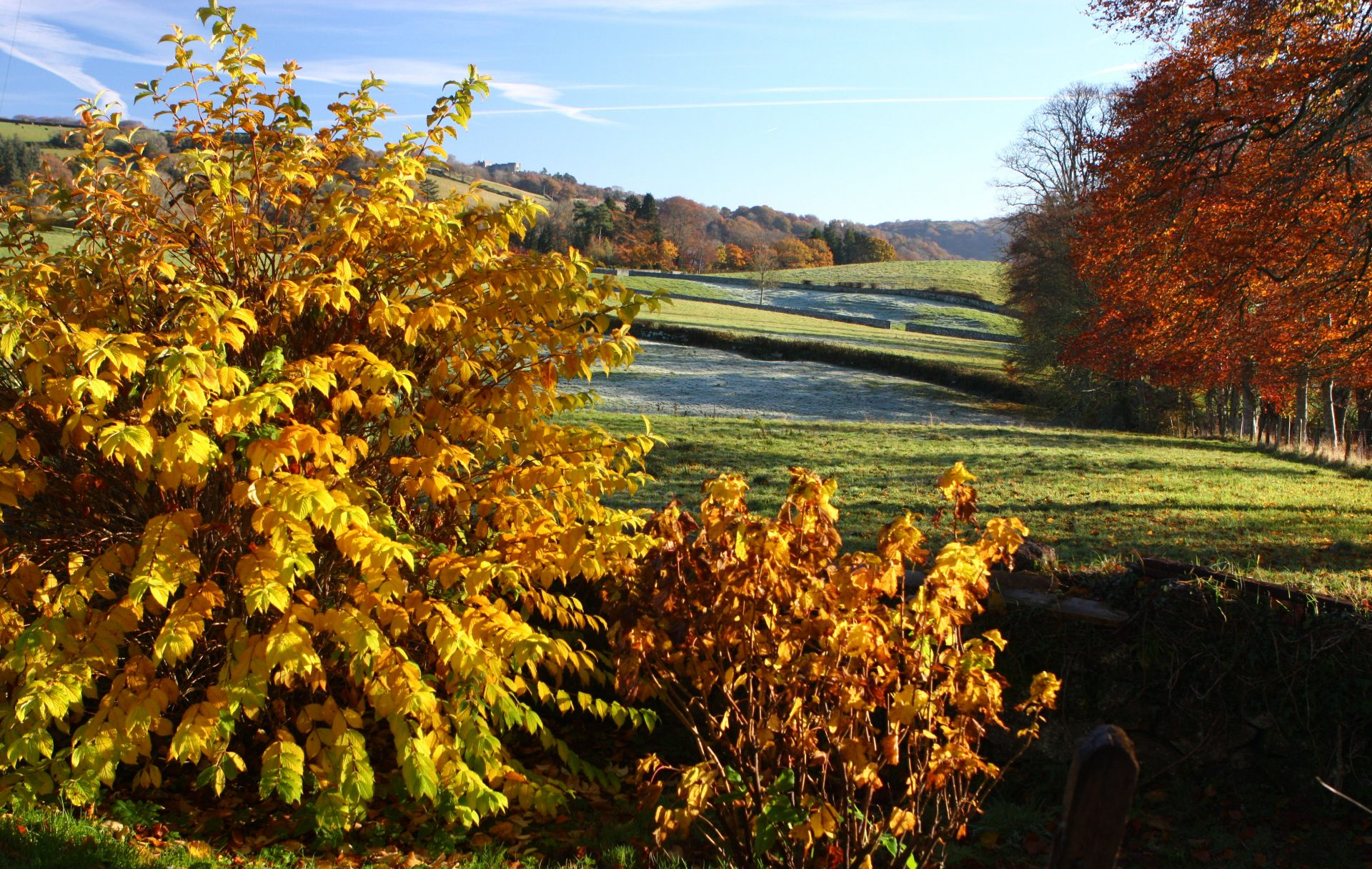 ... and this was the view from our garden.