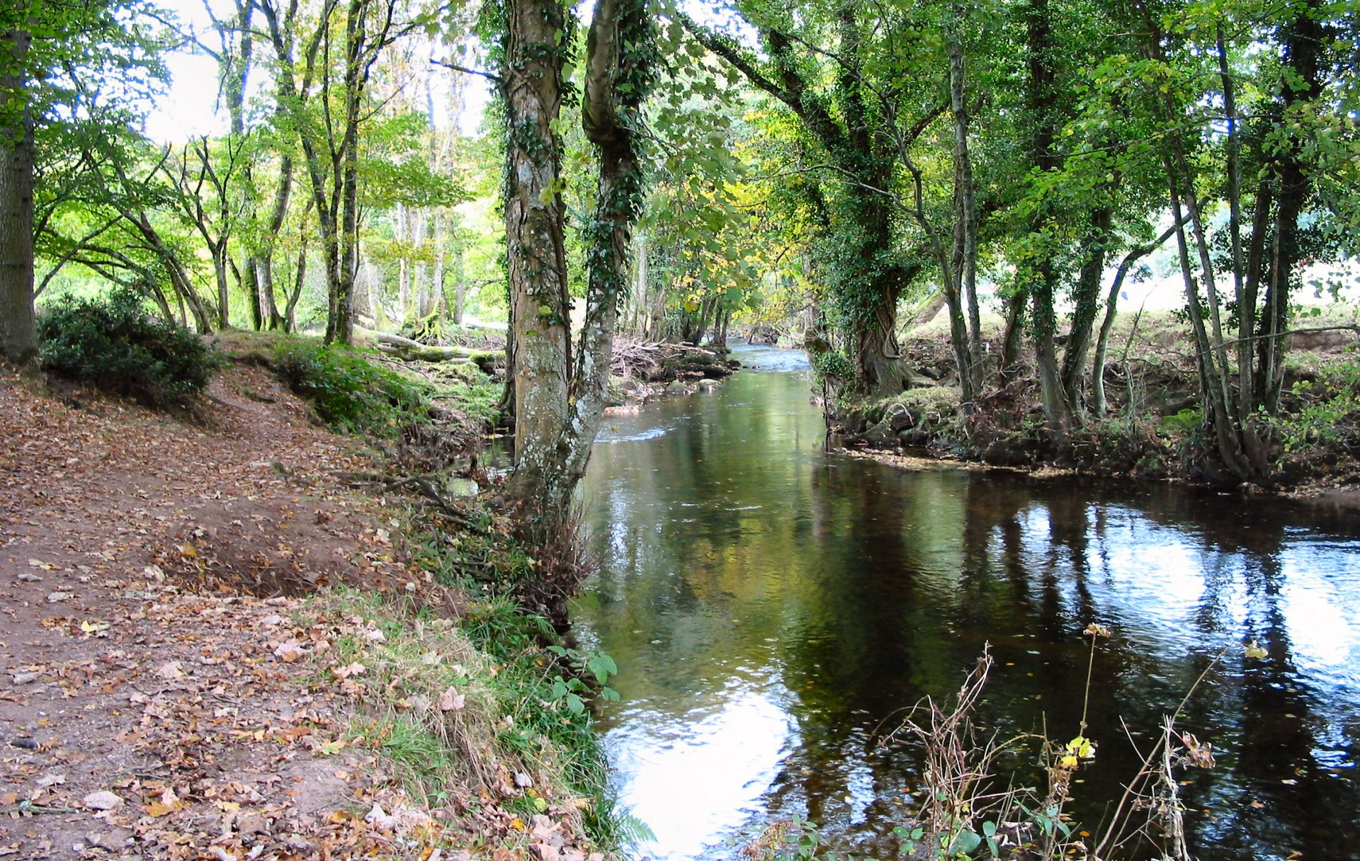 The River Teign that flows from Chagford to Drewsteignton.